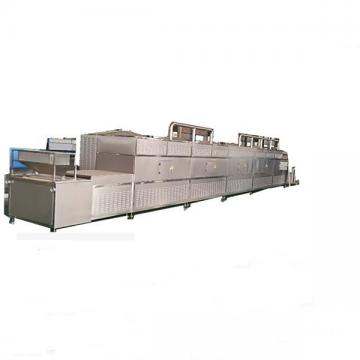 Food and Vegetable Continuous Conveyor Belt Dryer