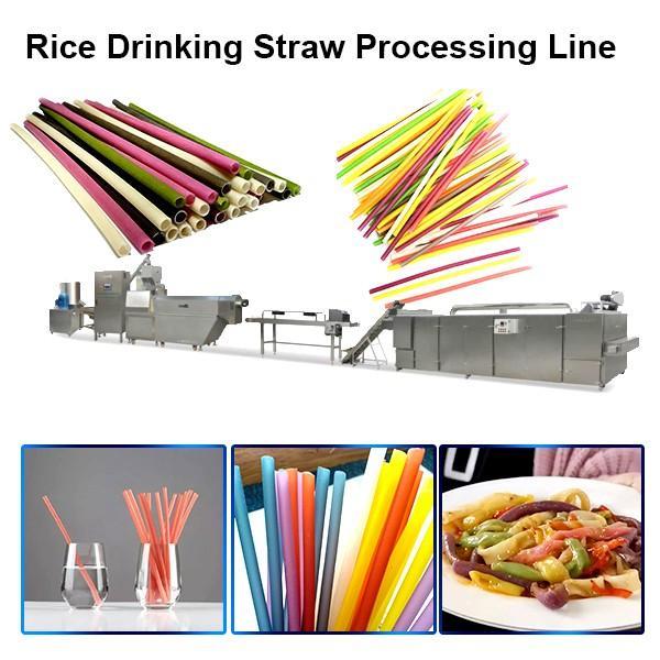 Pasta Straw Production Line Pasta Straw Making Machine Pasta Machine